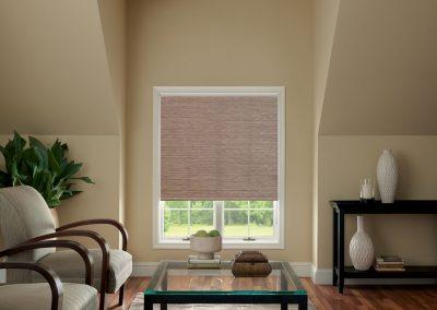 aja blinds 001